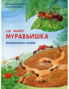 Где живет муравьишка....