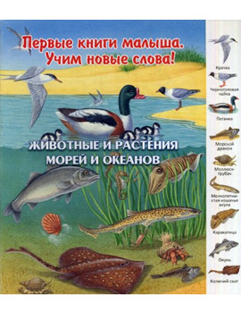 Животные и растения морей и...